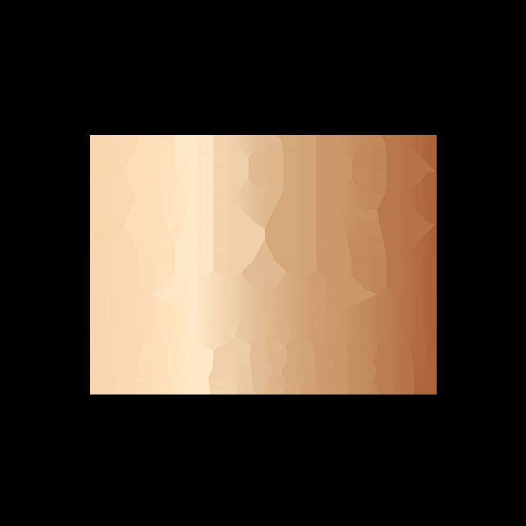 EMPIRE STAR ACADEMY